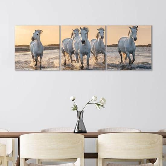 quadri su tela con cavalli bianchi, decorazioni murali