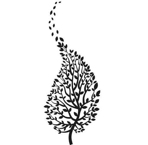 ramo con foglie in posizione speculare
