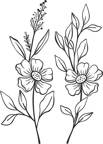 disposizione fiori adesivi